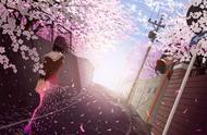 YOYO说|日本人为何如此喜爱樱花?