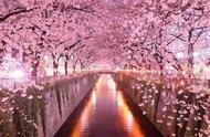 「最全」日本旅游时间表,你来的月份对不对?